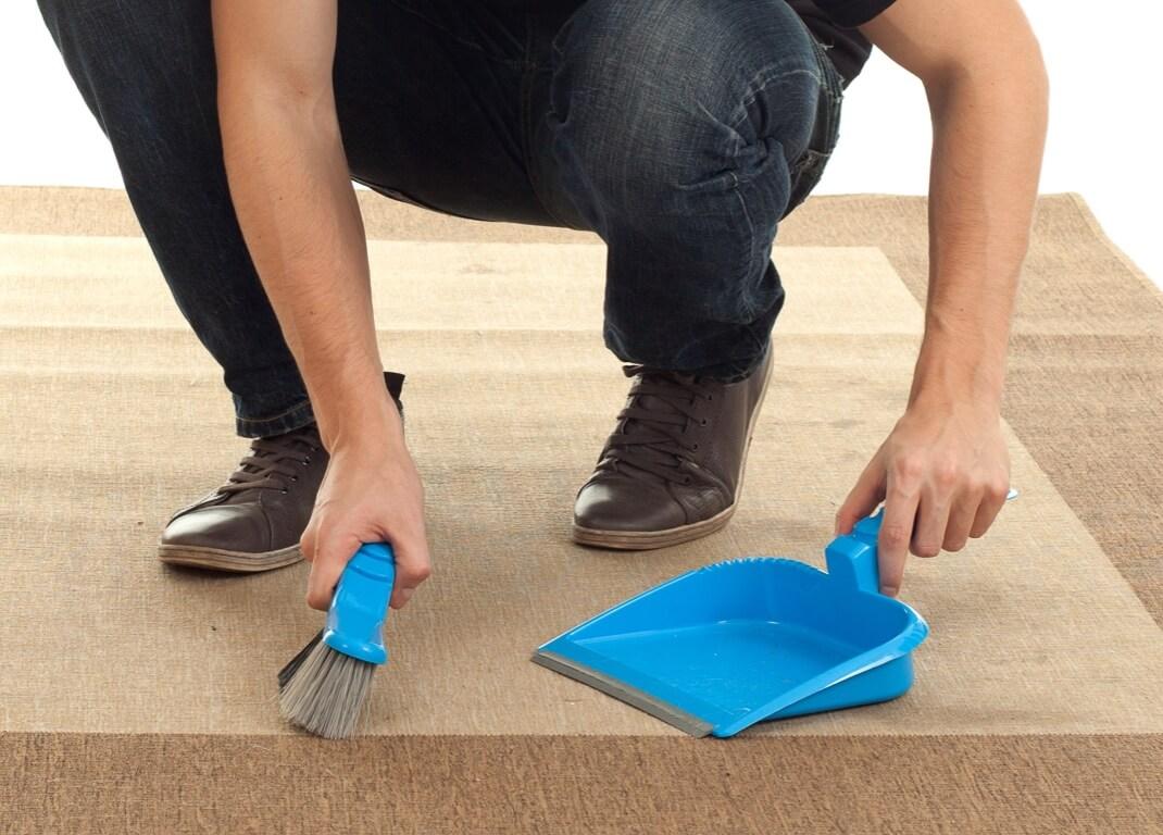 Cepillar alfombras para la limpieza regular